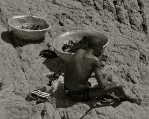 Man sitting on coast rocks with his mussel catch in metal bowls around him.